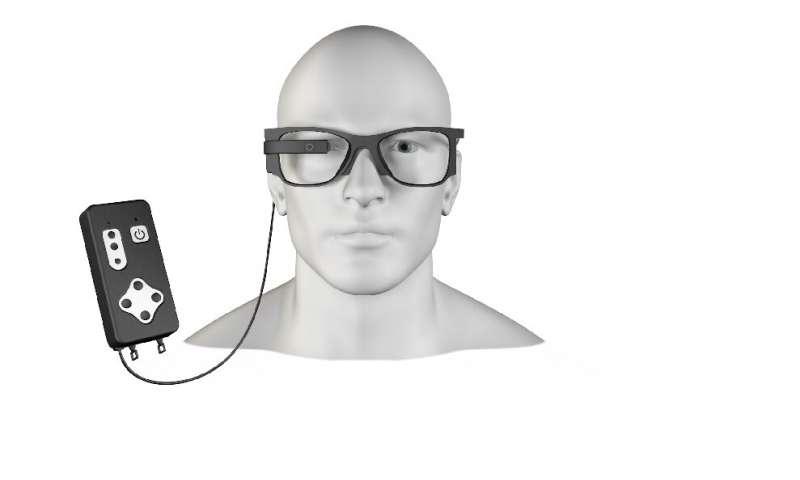bionicvision