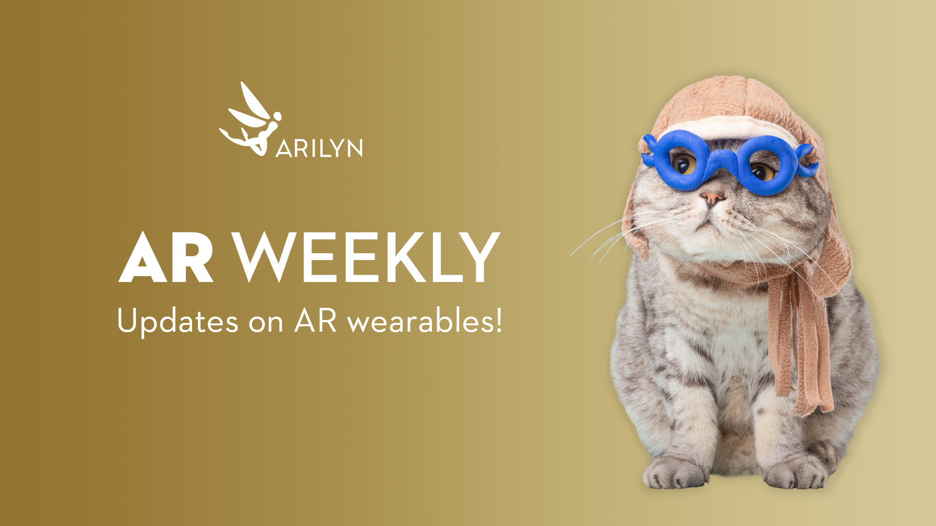 AR Weekly | October 30 | 2020